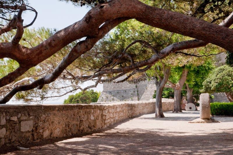 Sous les arbres sur la forteresse proche carrée de Frankopan chez Krk images stock