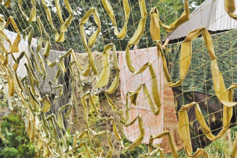 Sous-vêtements derrière le filet de camouflage photographie stock