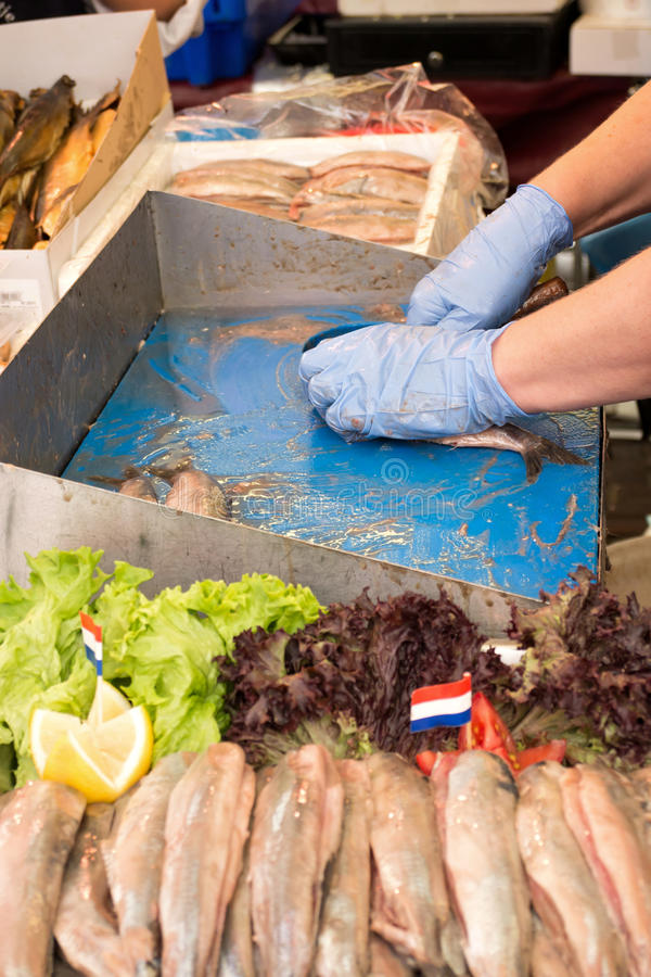 Soused herring. Traditional soused herring being prepared and offered at Dutch weekly market stock photography