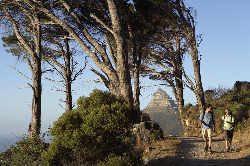 South Africa, couple hiking along tree-lined mountain path, front view stock photography