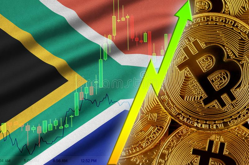 South Africa flag and cryptocurrency growing trend with many golden bitcoins royalty free stock photography