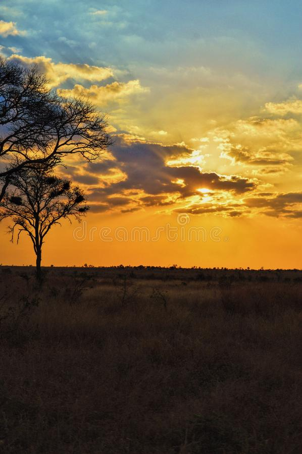 South Africa sunset royalty free stock images
