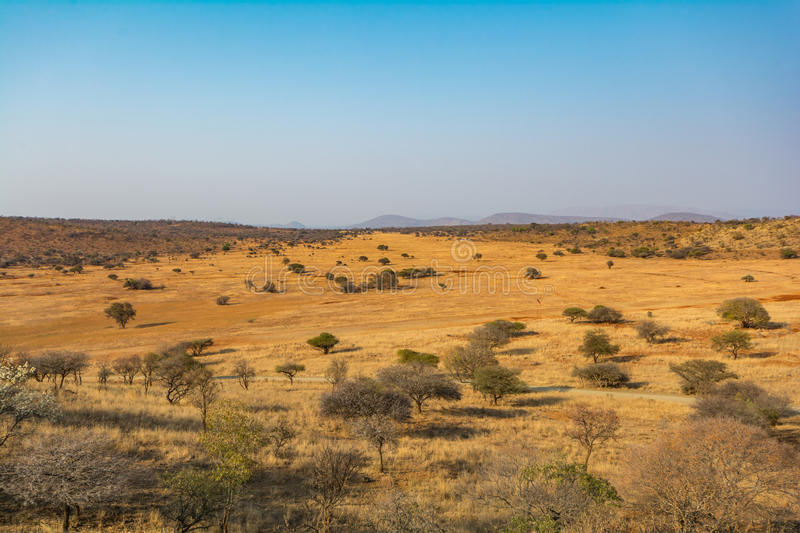 South African Veld Region stock images