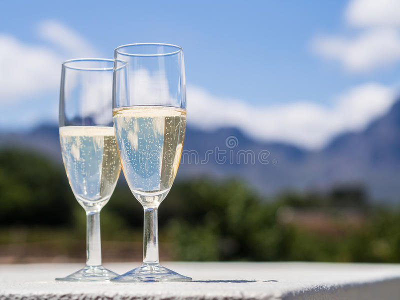 South African white sparkling wine in a garden. Horizontal photo of two glasses of South African white sparkling wine in a garden of a winery close to stock images