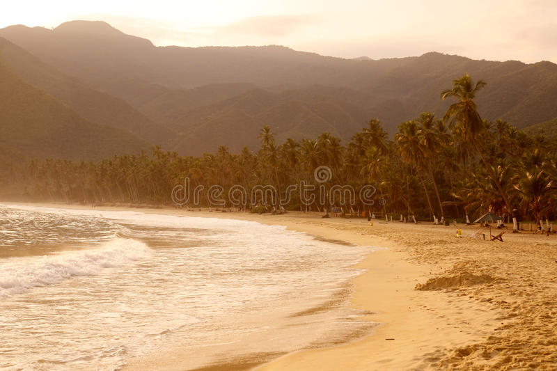 SOUTH AMERICA VENEZUELA CHORONI BEACH royalty free stock photos