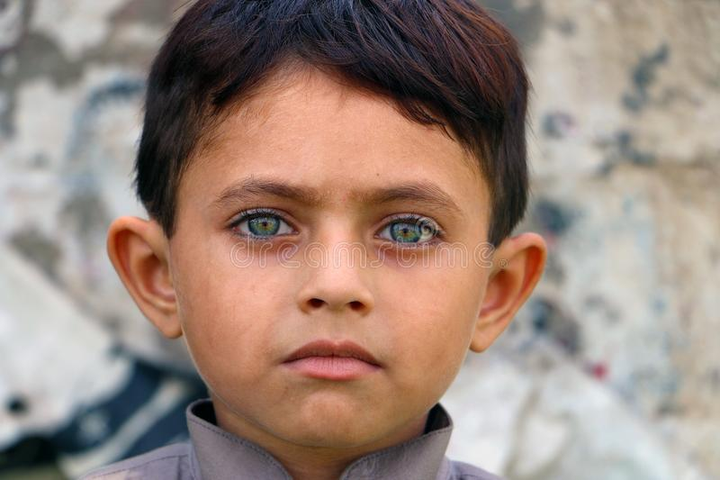 South Asian Child Green Eyes royalty free stock image