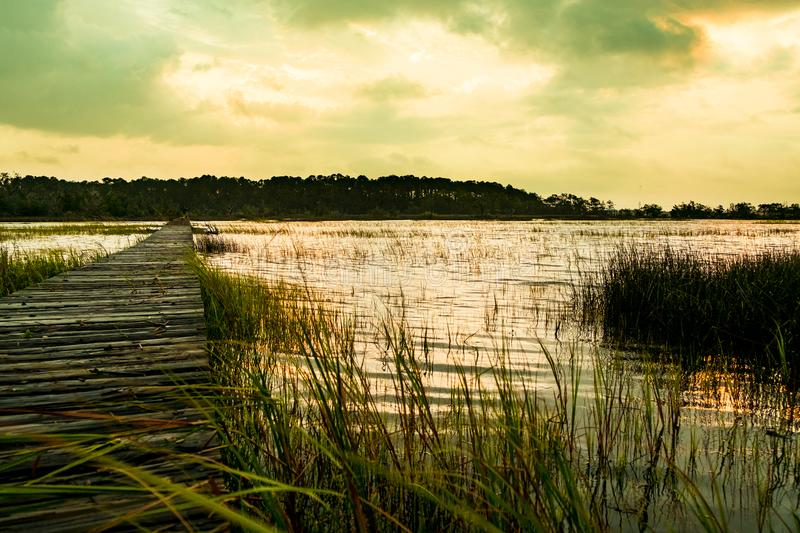 Wooden pier in south carolina low country marsh at sunset with green grass royalty free stock image