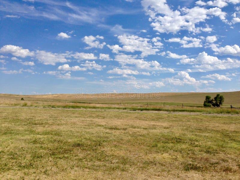 South Dakota grassland landscape in summer stock image