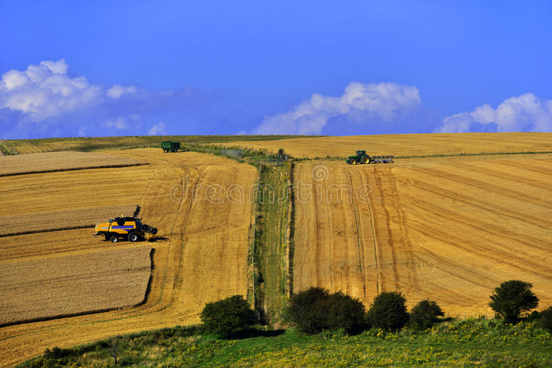 Download South downs stock photo. Image of downs, beacon, background - 26396244
