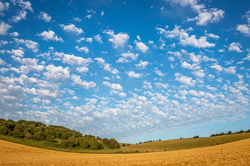 South Downs Landscape. A Sussex landscape on a sunny summers morning stock image