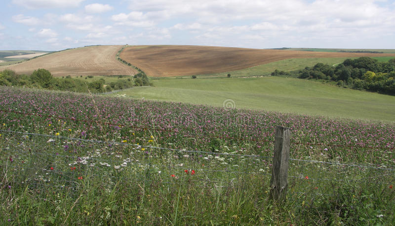 Download South Downs View stock photo. Image of field, mauve, fence - 34115862