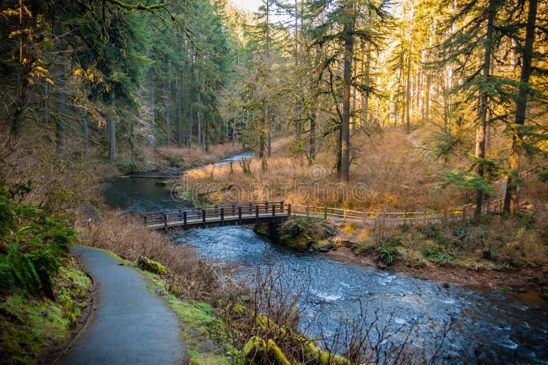 South Falls Creek royalty free stock photos