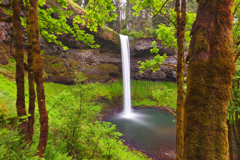 Download South Falls, Oregon stock photo. Image of wild, outdoor - 25540400