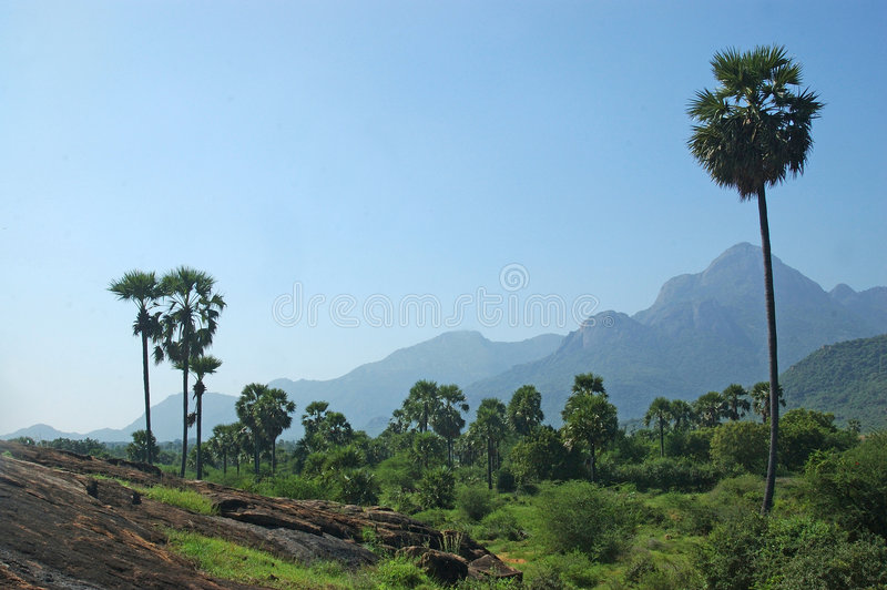 South India royalty free stock photo