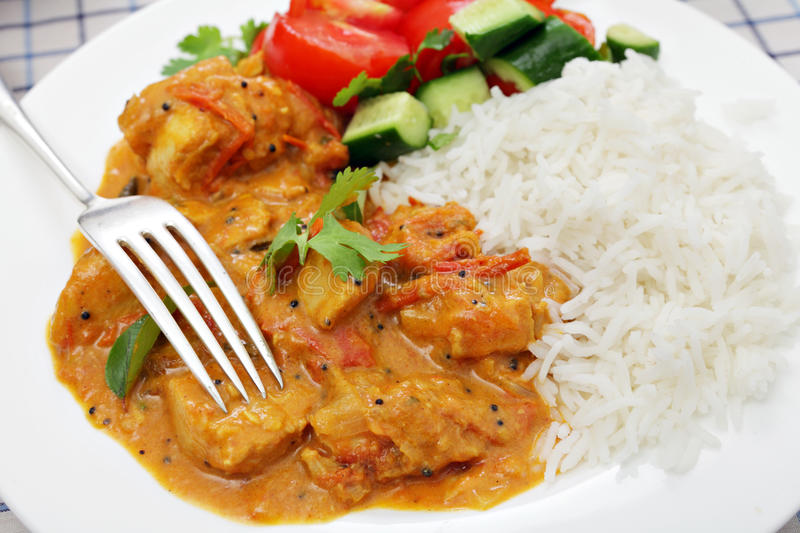 South Indian chicken curry royalty free stock images
