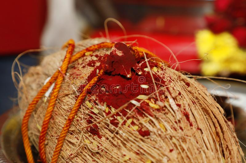 Closeup coconut with mangalsutra, South Indian wedding. stock image