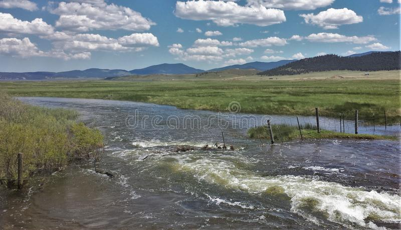 South Platte River. After unusually high rainfall amounts the South Platte River in Eleven Mile Canyon Colorado had overflowed its banks stock photography