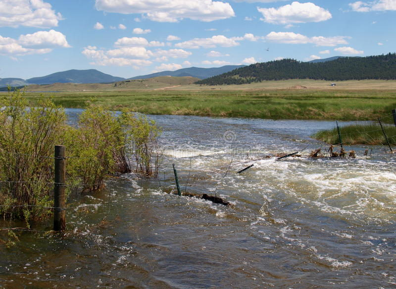 South Platte River. After unusually high rainfall amounts the South Platte River in Eleven Mile Canyon (Colorado) had overflowed its banks stock images
