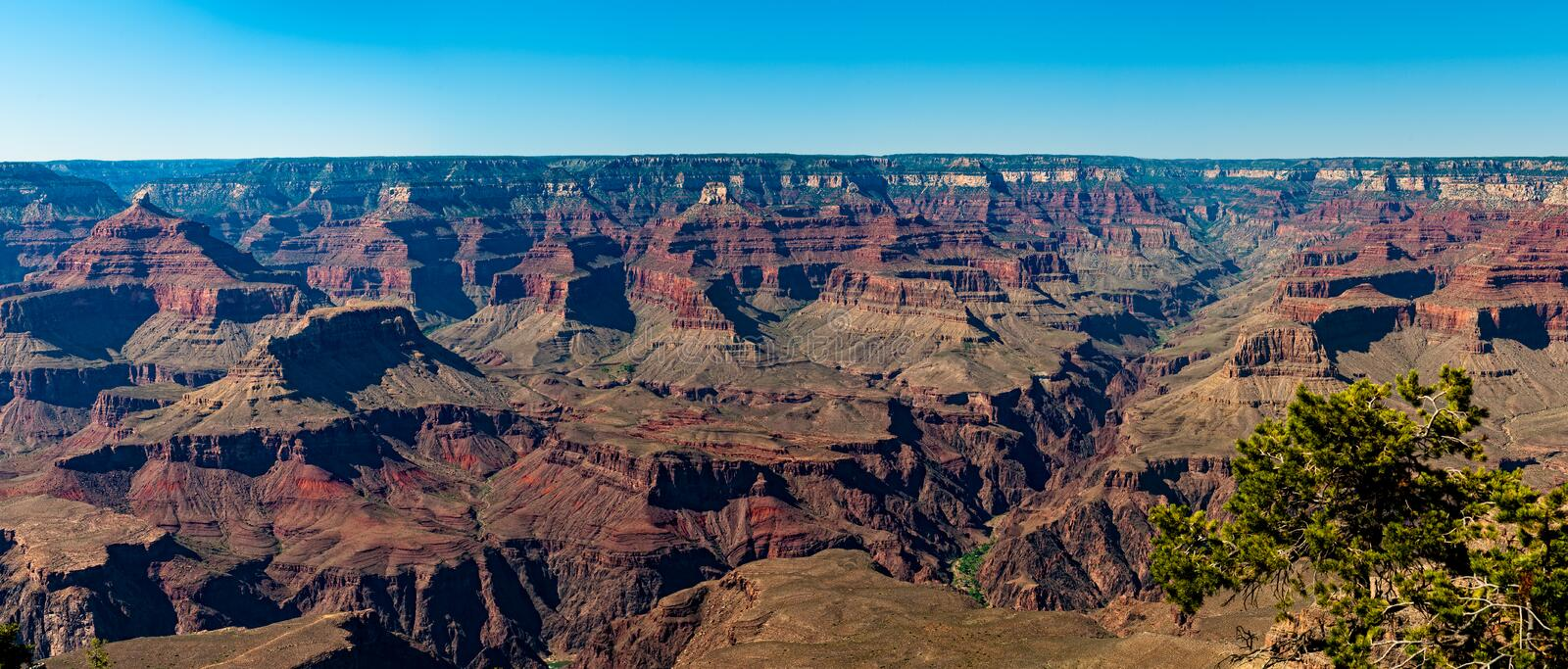 South Rim Grand Canyon royalty free stock photography