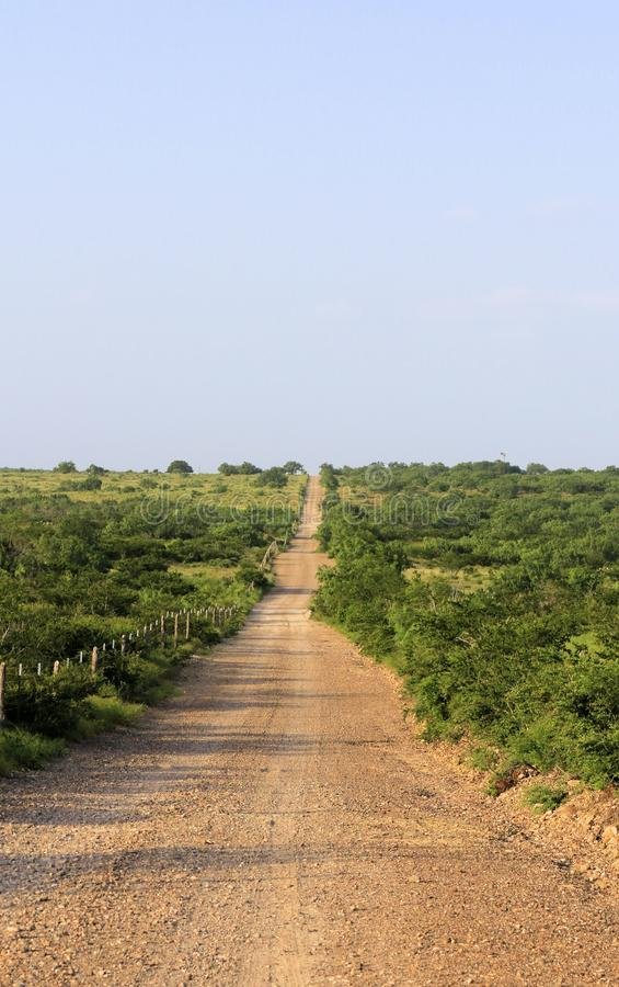 Free South Texas Ranch Road Royalty Free Stock Image - 95413986
