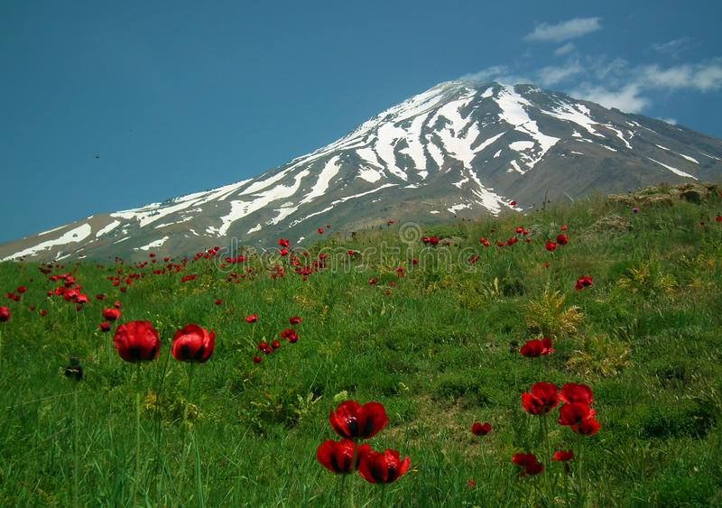 The South view of Mount Damavand royalty free stock photos