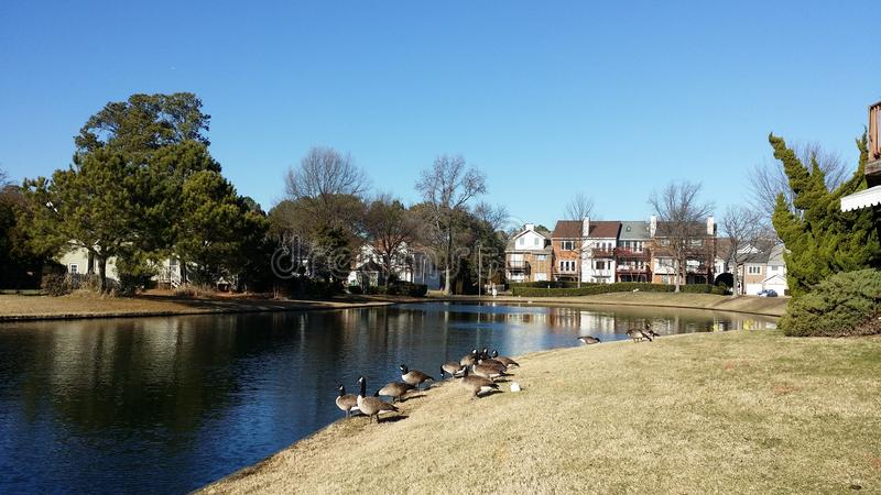 Southall Pond royalty free stock image