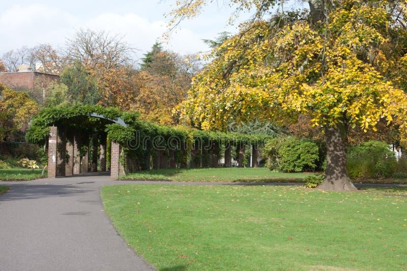 Download Southampton City Centre Park Stock Image - Image: 24641961