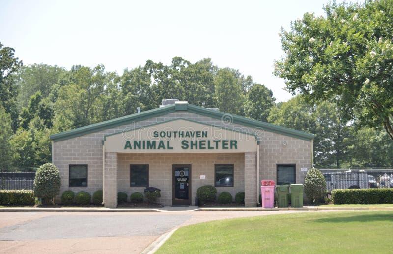Southaven动物庇护所, Southaven密西西比 库存照片