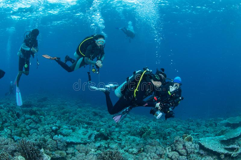 Southeast Sulawesi, Indonesia-March 8, 2018 : Divers are diving stock image
