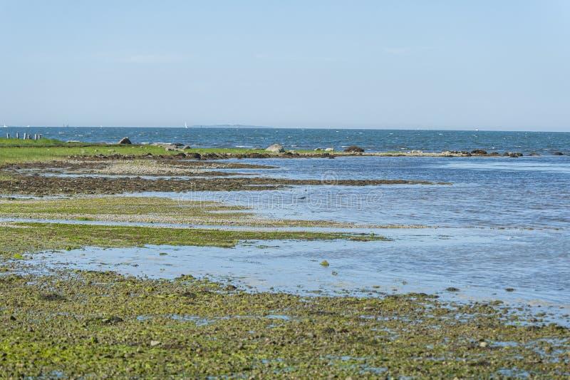 Southeastern Massachusetts coastline on breezy morning at low tide stock photos