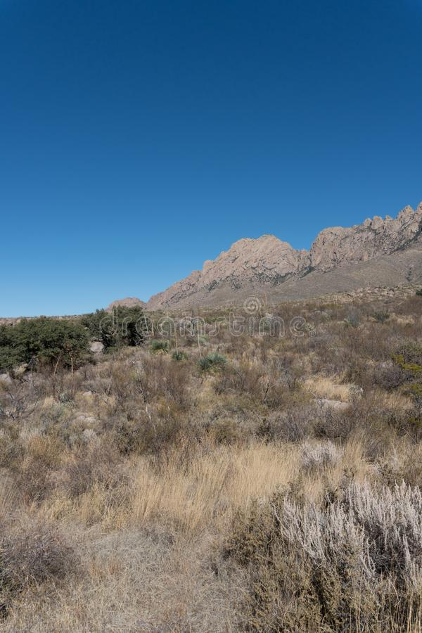 Southern edge of the Organ Mountains. stock image