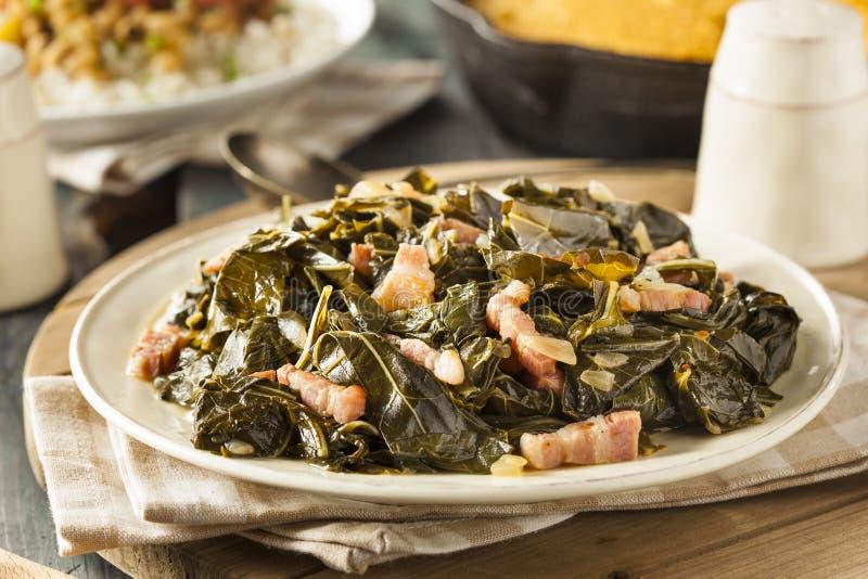 Southern Style Collard Greens. With Salt Pork stock photos