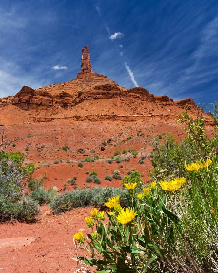 Southwest Canyon Landscape Outside Moab Utah USA. Southwest American Landscape of canyons near Moab Utah USA stock photo