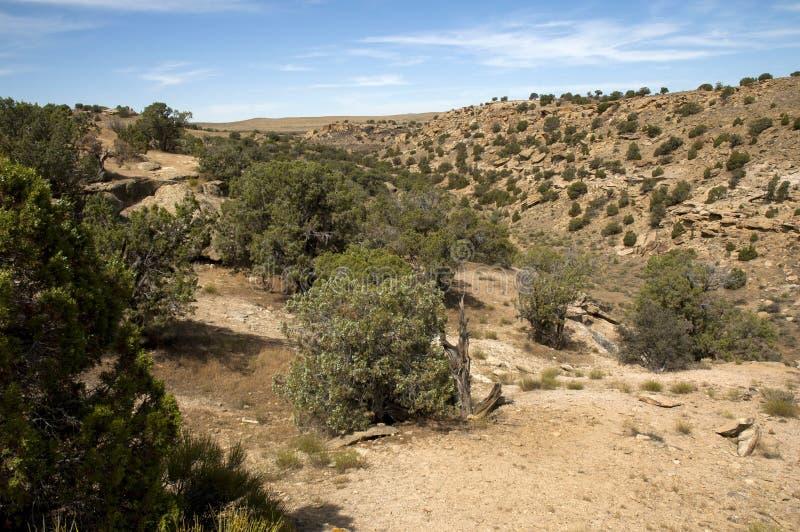 Southwest desert scene stock images