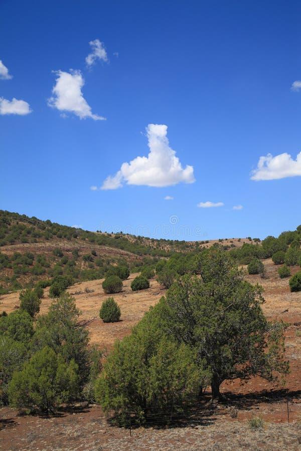Southwest Landscape. American Southwest - Arizona Landscape Prairie and Hills royalty free stock photos