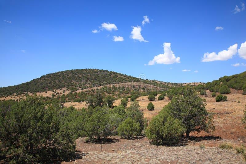 Southwest Landscape. American Southwest - Arizona Landscape Prairie stock photo