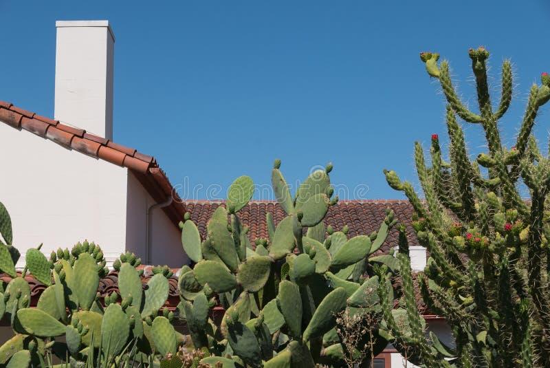 Southwestern architecture, cactus landscaping stock photos