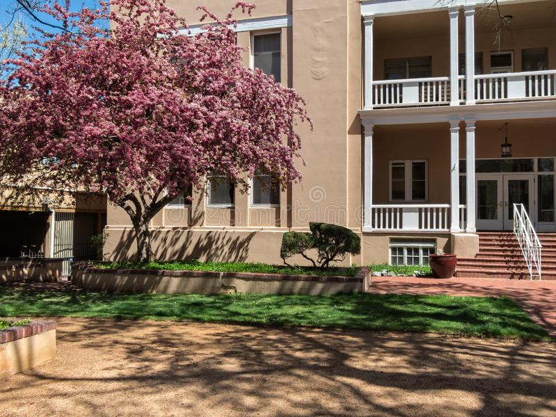 Southwestern architecture, Santa Fe, New Mexico. Office building and flowering Plum Tree, downtown Santa Fe, New Mexico stock photo