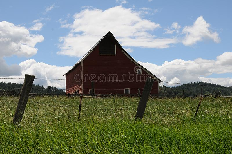 OLD BARNS AND CARS AND PICKUPS IN NEZ PERCE COUNTY royalty free stock photo