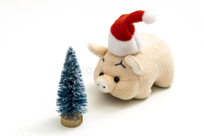 A souvenir pink pig or piggy bank in a red Santa Claus hat stands opposite a Christmas tree. Copy space. Shallow depth of field. A souvenir pink pig or piggy royalty free stock photography
