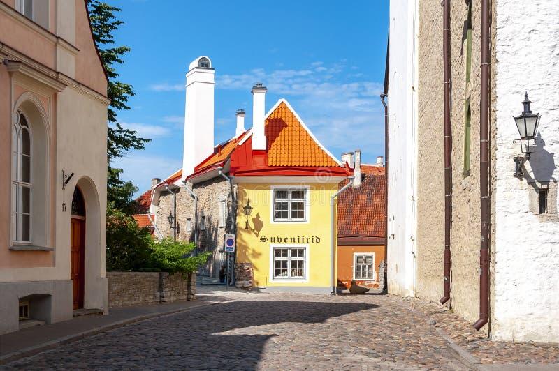 Souvenir store in Tallinn old town, Estonia stock image