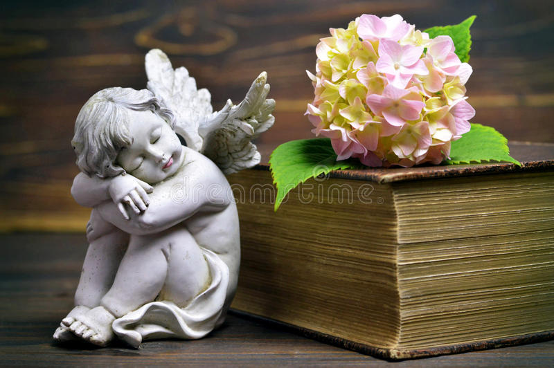 Sova ängel, blomman och den stängda boken arkivbild