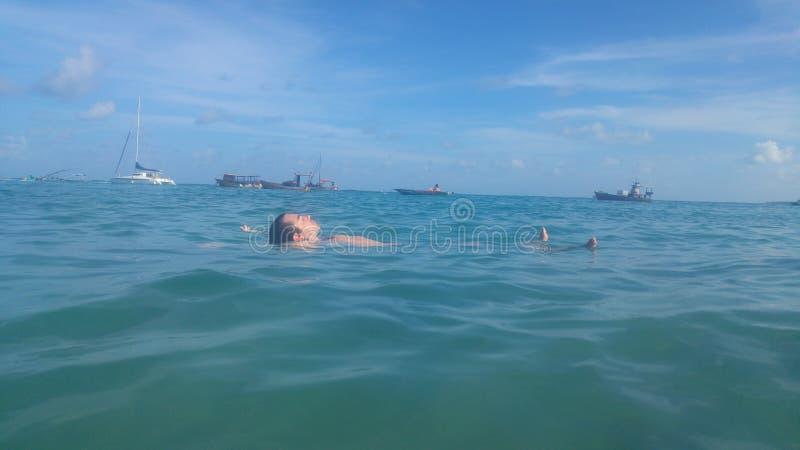 Sova över vatten royaltyfria foton