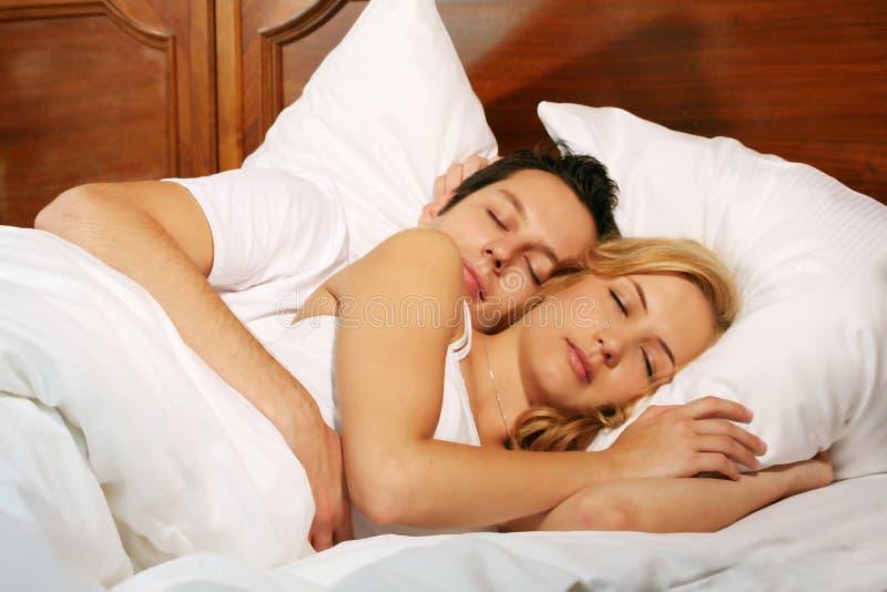 sova barn för par royaltyfri bild