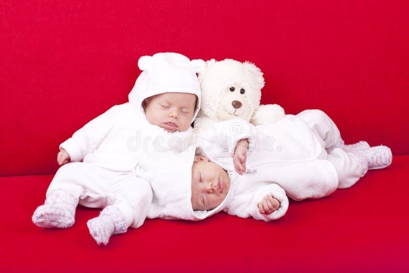sova för systrar som är tvilling- royaltyfri foto