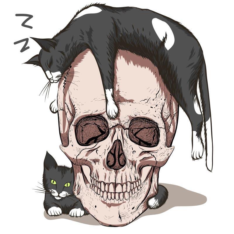 Sova katt stock illustrationer
