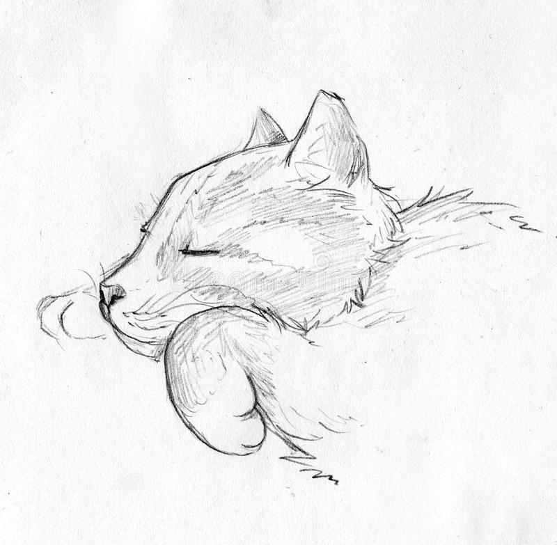Sova katten - blyertspennan skissar stock illustrationer