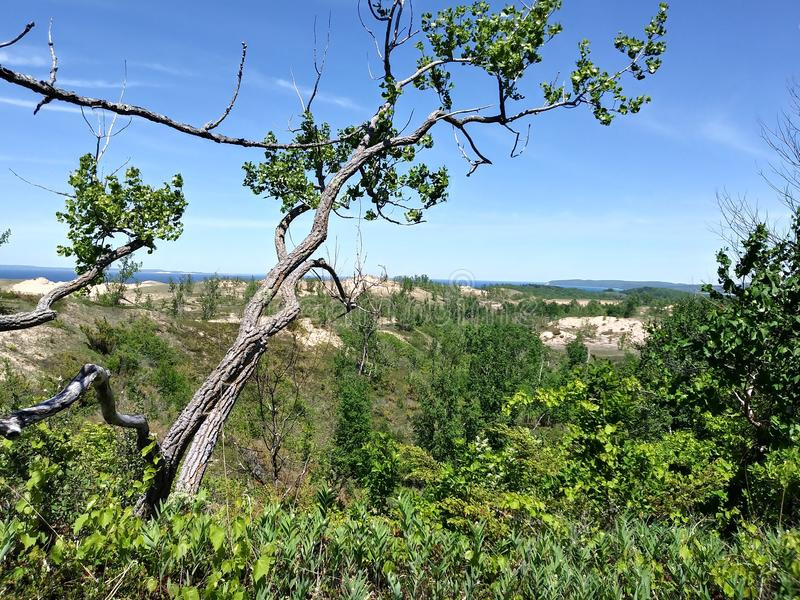 Sova landskap för kullar för slinga för destination för lopp för sikt för sjö för björk för träd för himmel för björndynMichigan  fotografering för bildbyråer