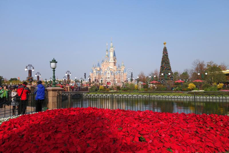 Sova skönhetslotten i Disneyland parkera i Shanghai royaltyfri fotografi