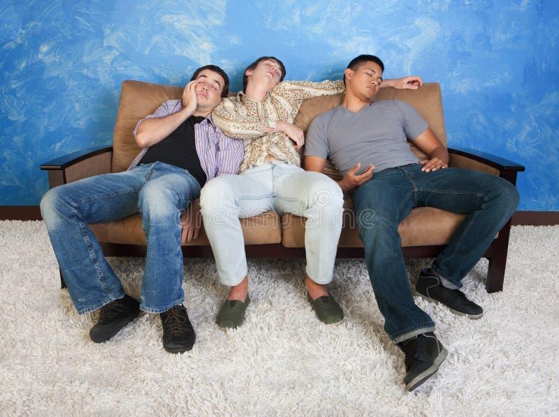 Sova tonåringar royaltyfri fotografi